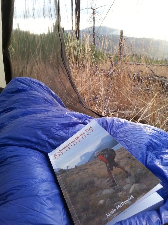 Inspired reading
