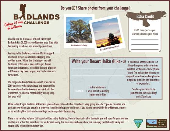 Badlands Challenge Map_for web_Page_2